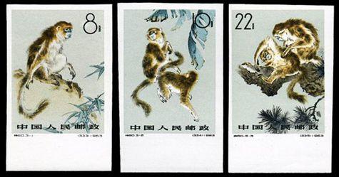 特60 金丝猴-无齿