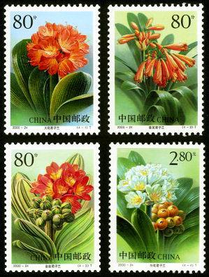 2000-24 《君子兰》特种邮票